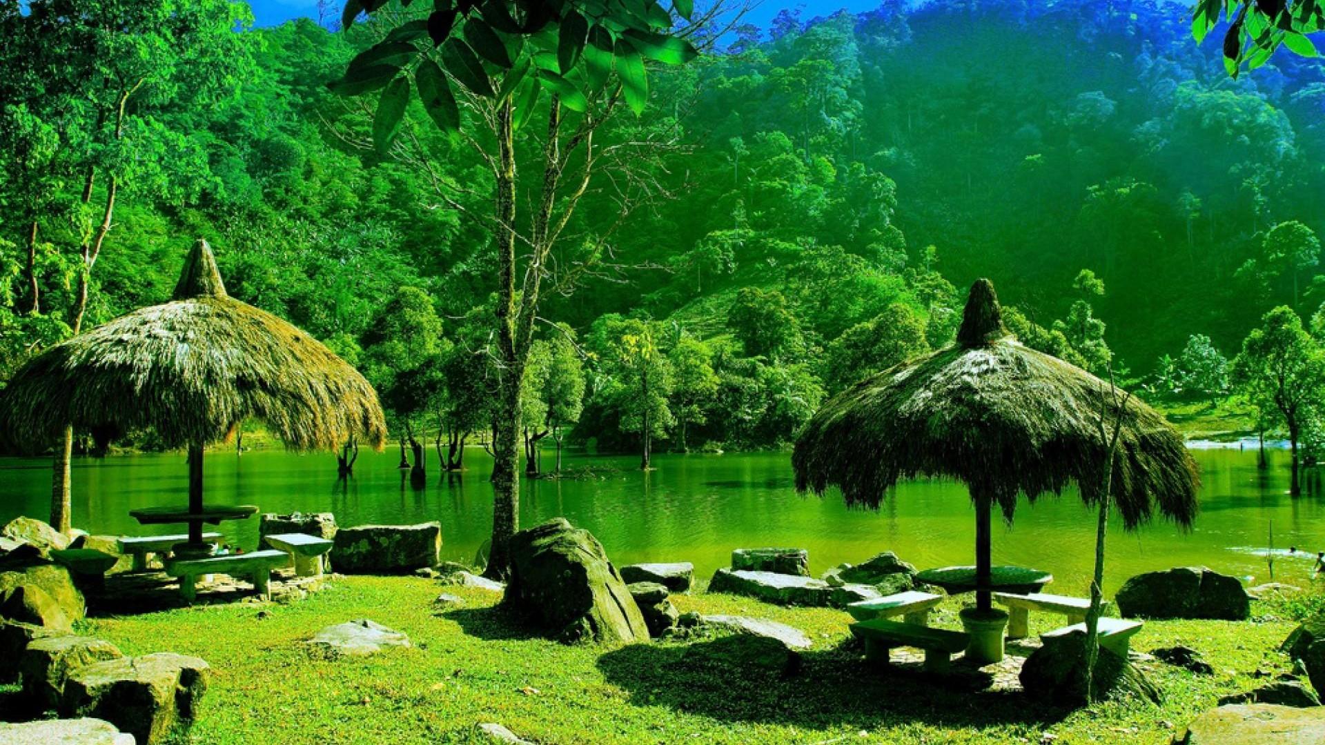 vivere in un oasi