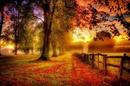 colori di settembre