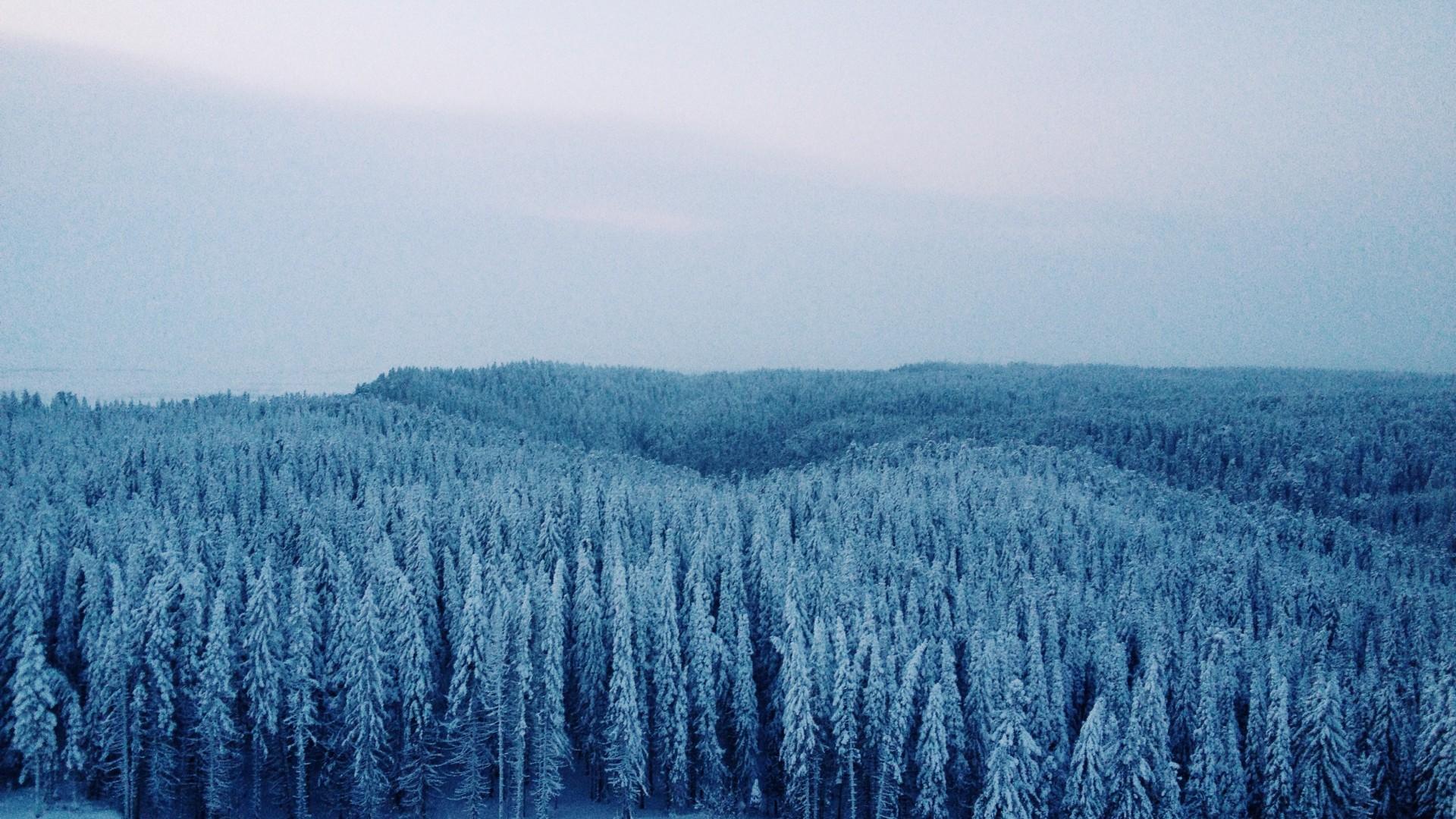 Siberia terra addormentata