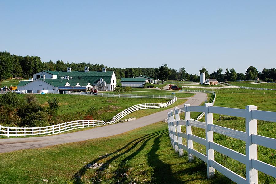 trasferirsi a vivere in fattoria