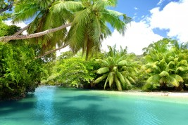 vivere alle seychelles