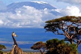 Visitare la Tanzania