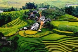 Andare a lavorare in Vietnam